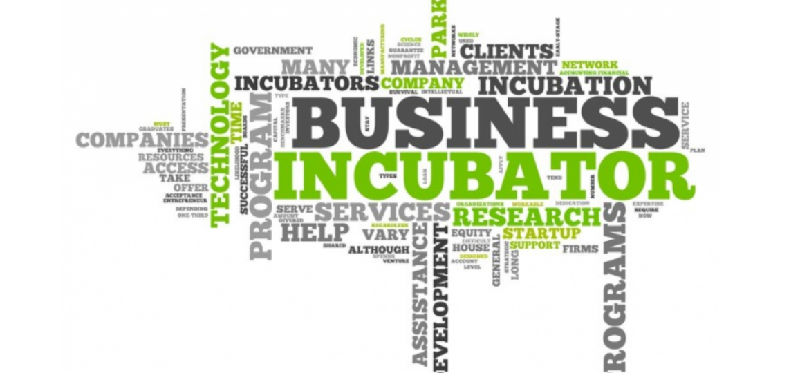 ENTREPRENEURIAL AND MANAGERIAL DEVELOPMENT OF SMES THROUGH INCUBATORS